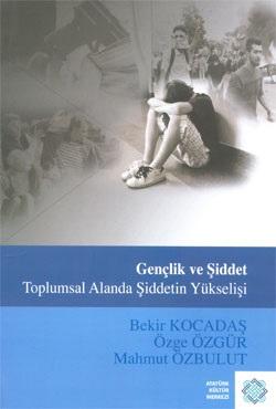 Gençlik ve Şiddet Toplumsal Alanda Şiddetin Yükselişi, 2010